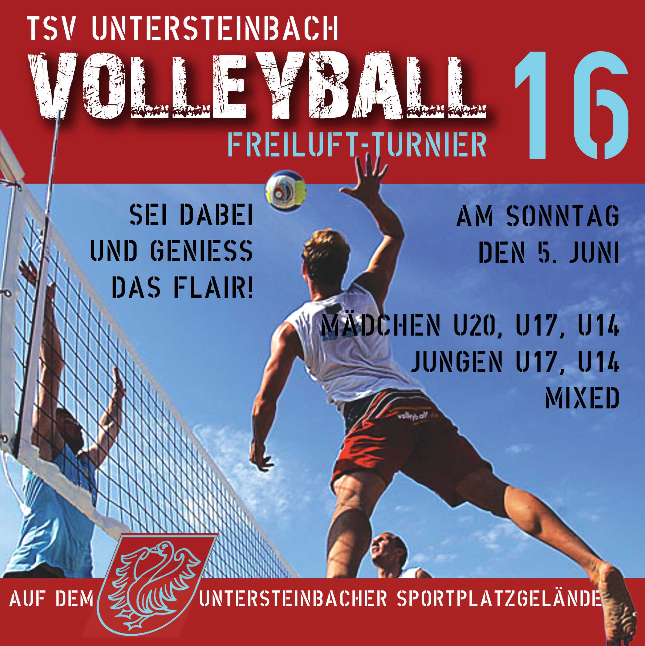 2016-Volleyballturnier Homepage quadrat