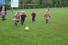 Jugendfußball-Pfingstturnier 2016